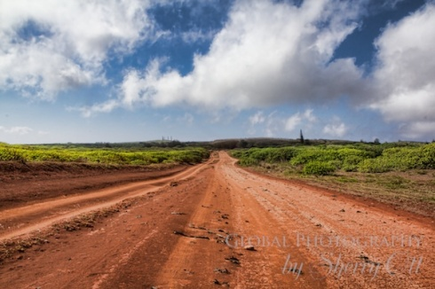 Lanai Open Road by Sherry Ott of @ottsworld